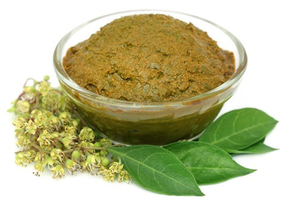 Preventing Liver Damage With The Henna Plant